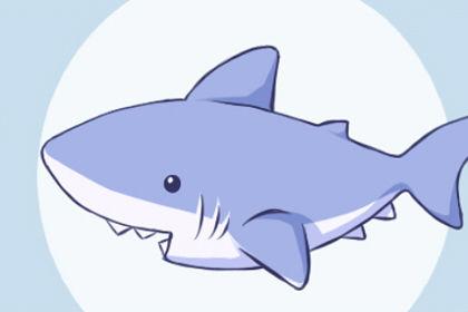 梦见一条巨大无比的鱼有何含义