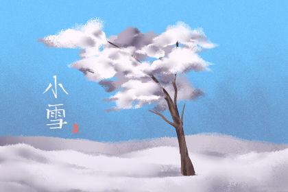 小雪节气的诗 天气特点