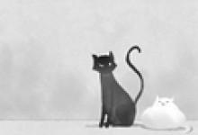 梦见猫饿了找我要吃的是什么意思