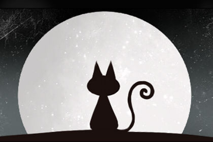 梦见猫跳上我的床是什么意思