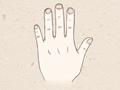 食指长短代表什么意思 有何说法