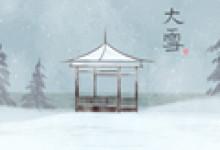 大雪节气手抄报欣赏 模板图片大全