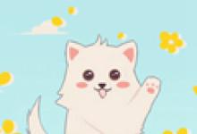 梦见一只特漂亮的猫预示着什么