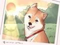 女狗狗名字大全 可爱的萌点的名字推荐