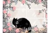 猫咪起名 高贵洋气 好听的公猫名字100个