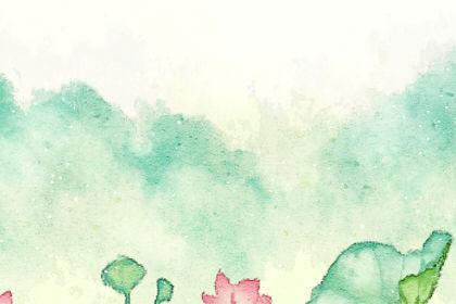 贵州乳状云奇观 1天出现5种气象景观