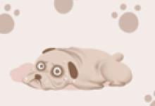 梦见大黄狗对我很友好是什么意思
