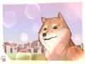 小狗的名字大全 呆萌可爱的宠物名字推荐