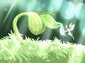 驚蟄春捂標準 怎么春捂