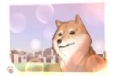 男狗狗的名字可爱霸气大全 一点也不俗气