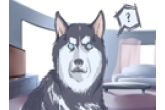 给狗狗极速排列三字呆萌些的 黑色的小狗极速排列三