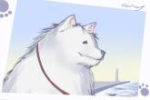宠物狗小型犬智商排名 有智慧的狗狗名字