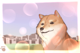 性格安静的小型犬怎么5分钟6合网站好听