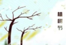 植树节美丽简单手抄报 六年级简单模板