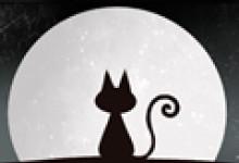 梦到白猫和自己说话有什么预兆