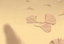 诡魅塔罗每日运势 2020年3月23日12星座运势播报