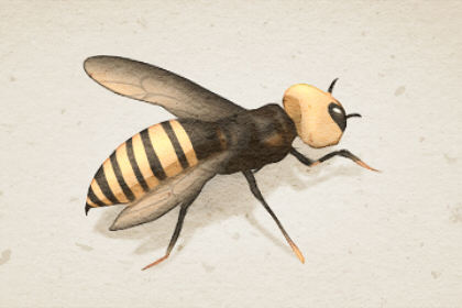 在梦中的蜂巢里看到很多蜂蜜意味着什么
