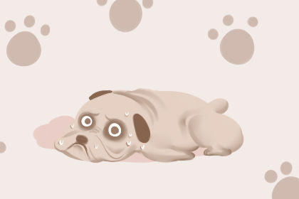梦见一只狗蹲在门口是什么意思
