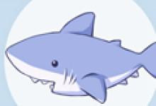 孕妇梦见鲨鱼是怎么回事