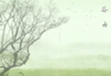 2020谷雨时节经典语录 春天暖心问候语