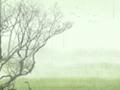 今日谷雨 万物春生是什么意思 风物民俗
