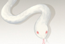 梦见蛇在天上飞代表着什么