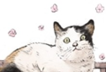梦见猫跑到自己床上来代表着什么