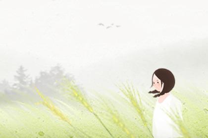 女人梦见采茶是什么征兆