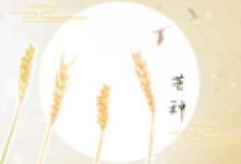 2020芒種節氣快樂祝福語 夏季暖心祝福