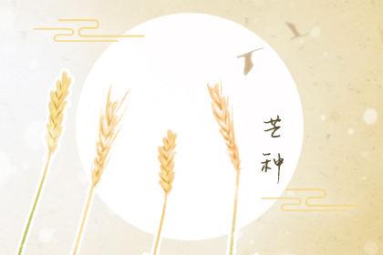 2020芒种节气快乐祝福语 夏季暖心祝福