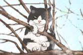 日系猫咪名字有哪些 可爱顺口的猫名字