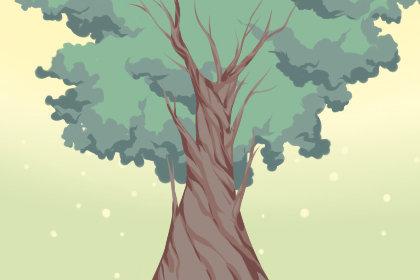 梦见自己在大树上最高处是什么意思