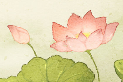 梦见盛开的红花是什么意思