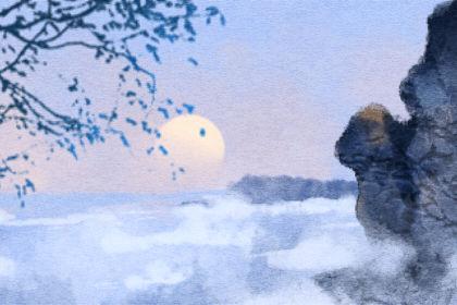 南京玄武湖罕见再现并蒂莲 并蒂莲是什么意思