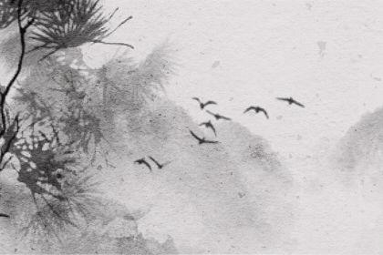 鄱陽湖各水文站全線告急 有多深 在哪個縣