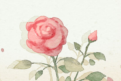 梦见许多花是什么意思