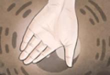 女生右手四条线图解分析