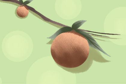 梦见吃荔枝是什么意思