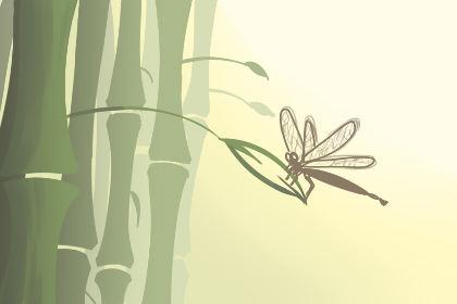 竹子开花吗什么艳色图片