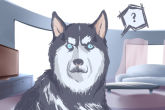 一条小黑狗的霸气名字推荐 威武凶猛