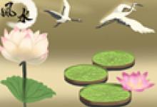 聚宝盆可以种植物吗 放在家里什么位置好