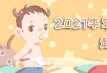 2021年牛宝宝起名大全