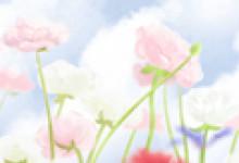 2021年十二星座守護花和花語 幸運石 開運顏色