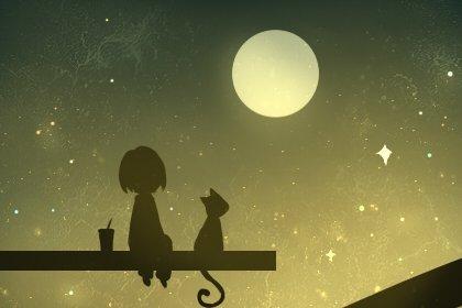 流星雨之王是哪个星座 什么时候出现