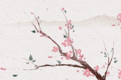 十大詛咒之花的花語 寓意 含義