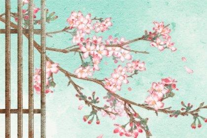 11种友谊之花花语 最能代表友情的花