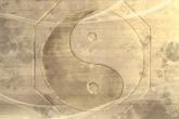 阴历腊八节出生 2021年1月20日的人属什么