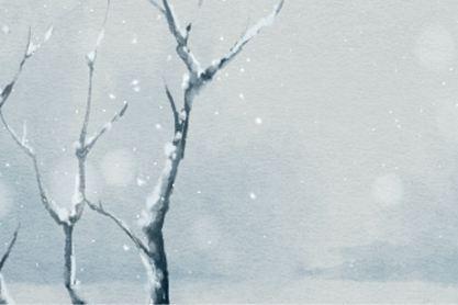 小雪飞满天来岁是丰年什么意思 节气简短由来