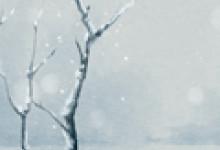 2020年小雪几月几日几点几分 11月22日4点28分