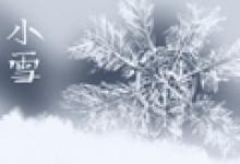 2020年小雪节气花信是什么 灯笼花报信